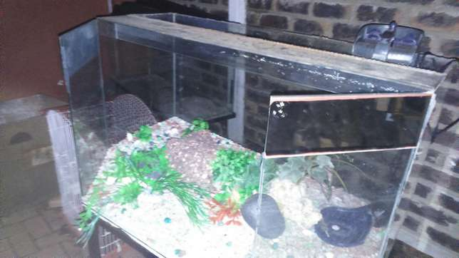 Fish tank for sale!! Strubens Valley - image 4