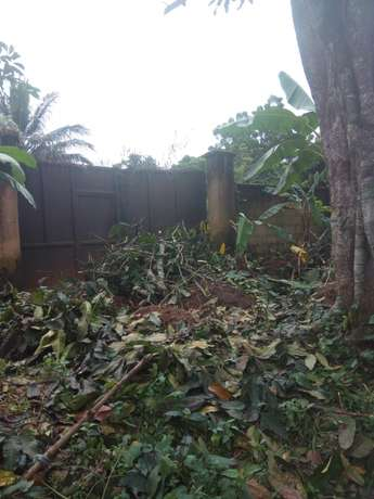 1 Plot in Nibo Awka Awka South - image 1