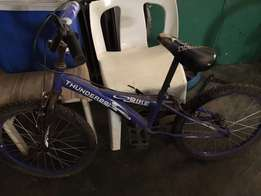 "16"" Raleigh bicycle"