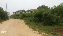 land Beautiful 1/2 An Acre Behind Mamba Village