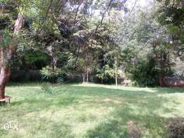 0.5 acre plot with 4bedrooms bungalow behind valley arcade shopping ce
