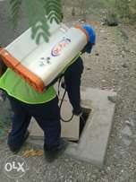 Fumigation and pest control services.