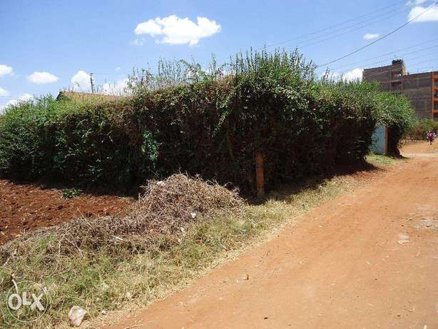 Thika Rd 3br hse on 2 1/8 plots (1/4) with titles ideal for redev. Nairobi CBD - image 7