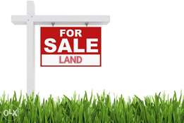 Land with DPR licence Ikeja