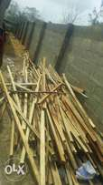 2/2 wood for logging is for sale