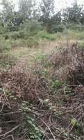 1/4Acre,1/2Acre,1Acre,5Acre and lands for sale at Ongata Rongai