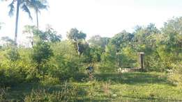 Land for sale in mombasa south coast ng'ombeni 3acreas farm land with