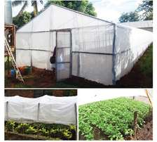 Insecticide Net (High Density) long lasting for vegetable cultivation