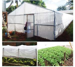 Insecticide Net (High Density) long lasting for vegetable cultivation Nairobi CBD - image 1
