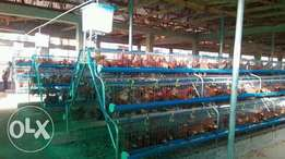 Full galvanized battery cage
