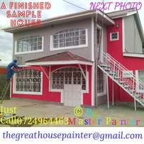 Painters With Vast Experience