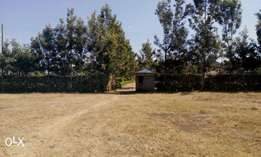 10 acres for sale in kahawa sukari at 33m per acre