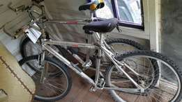Antique Mountain Bicycles for sale