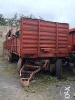 Pullings For Sale Perfect for farming, sugarcane use