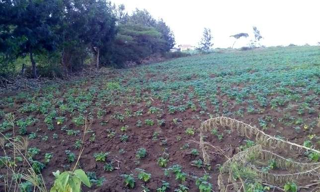 Land for sale in Bahati (6 acres ) Nakuru East - image 3