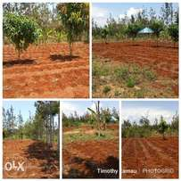 3/4 acre land for sale at Makuyu,pundamilia. Approx 2.3 kms off tarmac