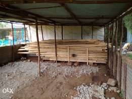 Timber for sale in Eldoret