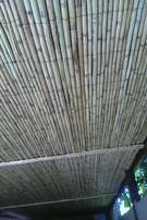 I specializing in Reeds Ceiling and fencing.
