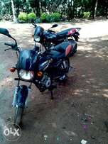 Boxer 150,on sell