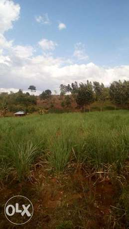 15acre land on sale in Pala,kabuoch,20km off Rongo town.160K per acre Kamenya - image 6