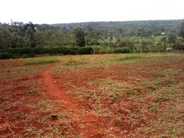 Runda prime 0.5 Acre Plot 40m