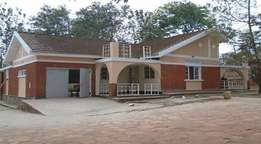 Too big 4 bedroom stand alone bungalow for rent in Buziga at 1.7m