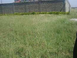 Kahawa sukari c quarter acre plot for sale