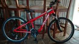 24' mountain bike