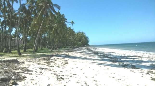 7 Acres Beach Plot For Sale in North Coast Mombasa With Clean Title Kilifi - image 1