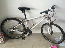 Silverman bicycle for sale