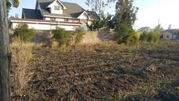 Prime 1/4 acre for sale in syokimau