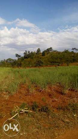 15acre land on sale in Pala,kabuoch,20km off Rongo town.160K per acre Kamenya - image 4