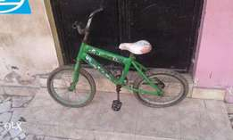 "16"" Green Panda Chidren's Bicycle"