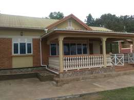 spacious 3 Bedroom home to let in Bukoto