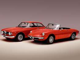 Old Alfas wanted