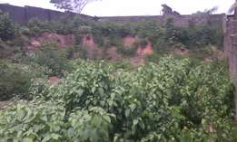full plot of lant at Agric ikorodu to be sold out by the owner of it.