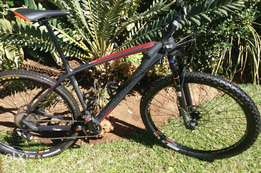 Silverback Storm 1 For Sale