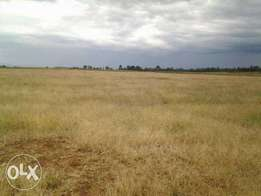 58 Acres for sale in Piave, Njoro - Nakuru county