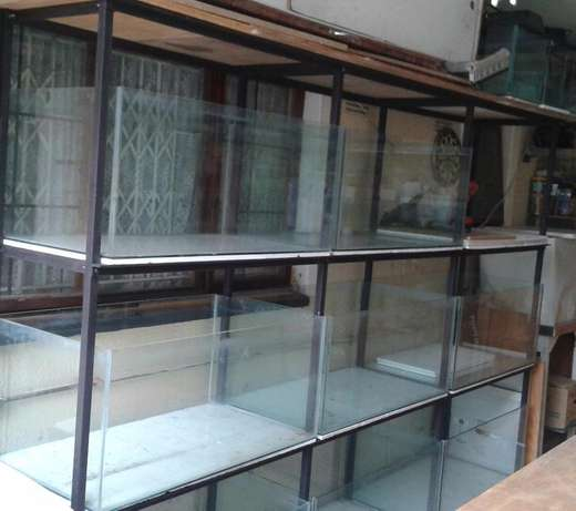 fish tanks for sale Queensburgh - image 2