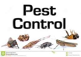 Pest Exterminator and Cleaning