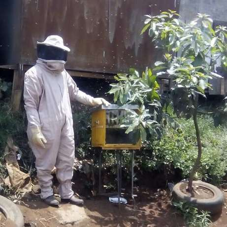 Canaan Best Quality Beehives Githurai 44 - image 3
