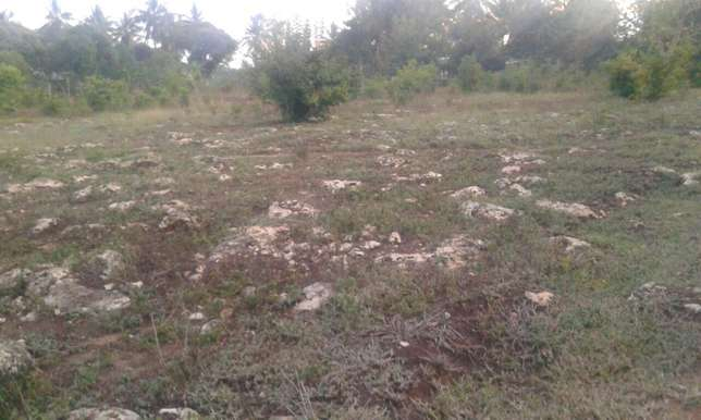 1.25Acre For Sale Near Sultan Palace Mombasa Kikambala Mtwapa - image 2