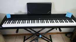 Korg Stage Piano