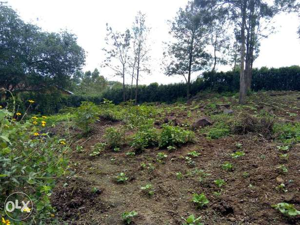 Prime 3 1/8 plots for sale Ongata Rongai - image 5