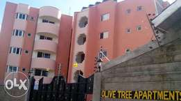 3br or 2br apartment for sale in thindigua kiambu road (owner selling)