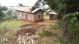 1.5 acres withb house for sale at kabazi.