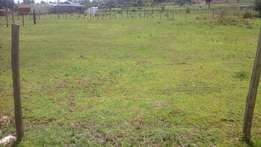 1/4 plots for sale near eldoret airport