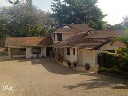 8 bedroom bungalow for letting.