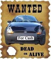 Wanted - Bakkies and Cars - Wanted