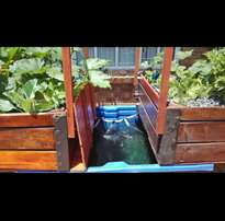 Aquaponic/hydroponic home garden